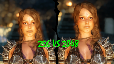 SKSE HD Makeup and Tintmask Config Guide