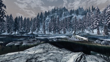 with Dark Forests of Skyrim