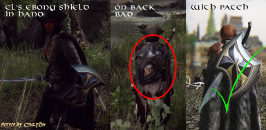 CrazyLion's Shields with Cloaks Patch