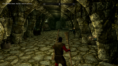 An-arrow-in-the-knee and other stuff you never missed in Skyrim