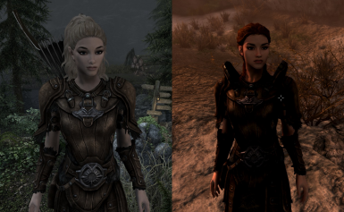 Symmetrical Leather Armor - Replacer