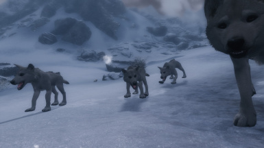 On Wolf Pups added by Immersive Creatures
