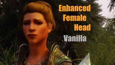 Enhanced Female Head Mesh - Vanilla