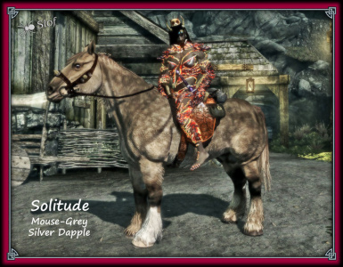 Slof's Asymmetrical Horse Project