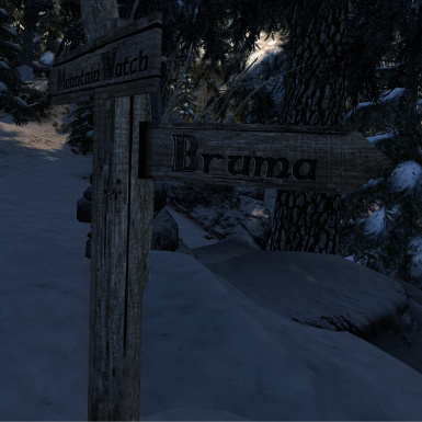Bruma patch