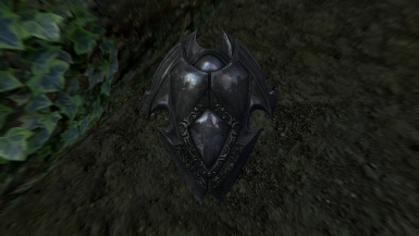 aMidianBorn Ebony Shield with the cubemap