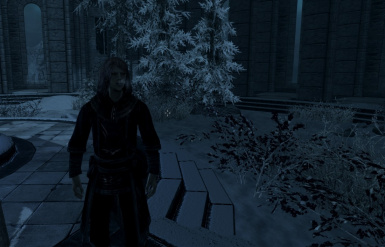 Alaine arriving at the College of Winterhold at night