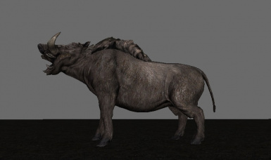 The Wild Boar you always wanted in Solstheim!