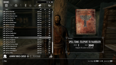 Spell tome in Falkreath from new NPC