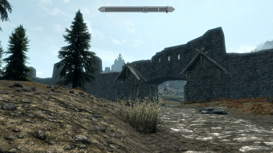 Walled Whiterun