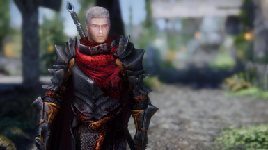 Hawke's Warrior Champion Armor - Dragon Age 2