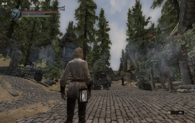 Skyrim INIs for Low End PCs