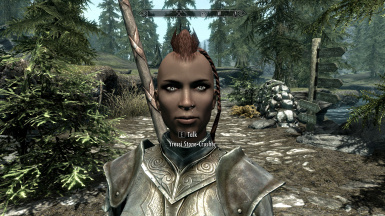 Yressi Stone-Crusher (a nord follower)