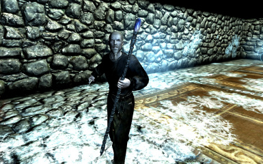 Warlock with Staves of Skyrim Staff