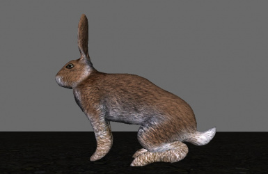 Hardy Hares enhances limbs for a hardier and more realistic appearance!