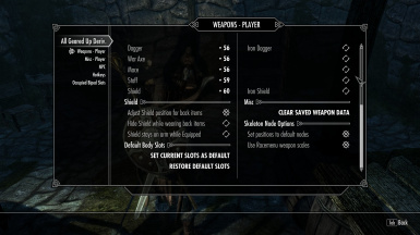 Options to alter the Player's Weapons Display