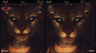 Khajiit Lion and Lioness