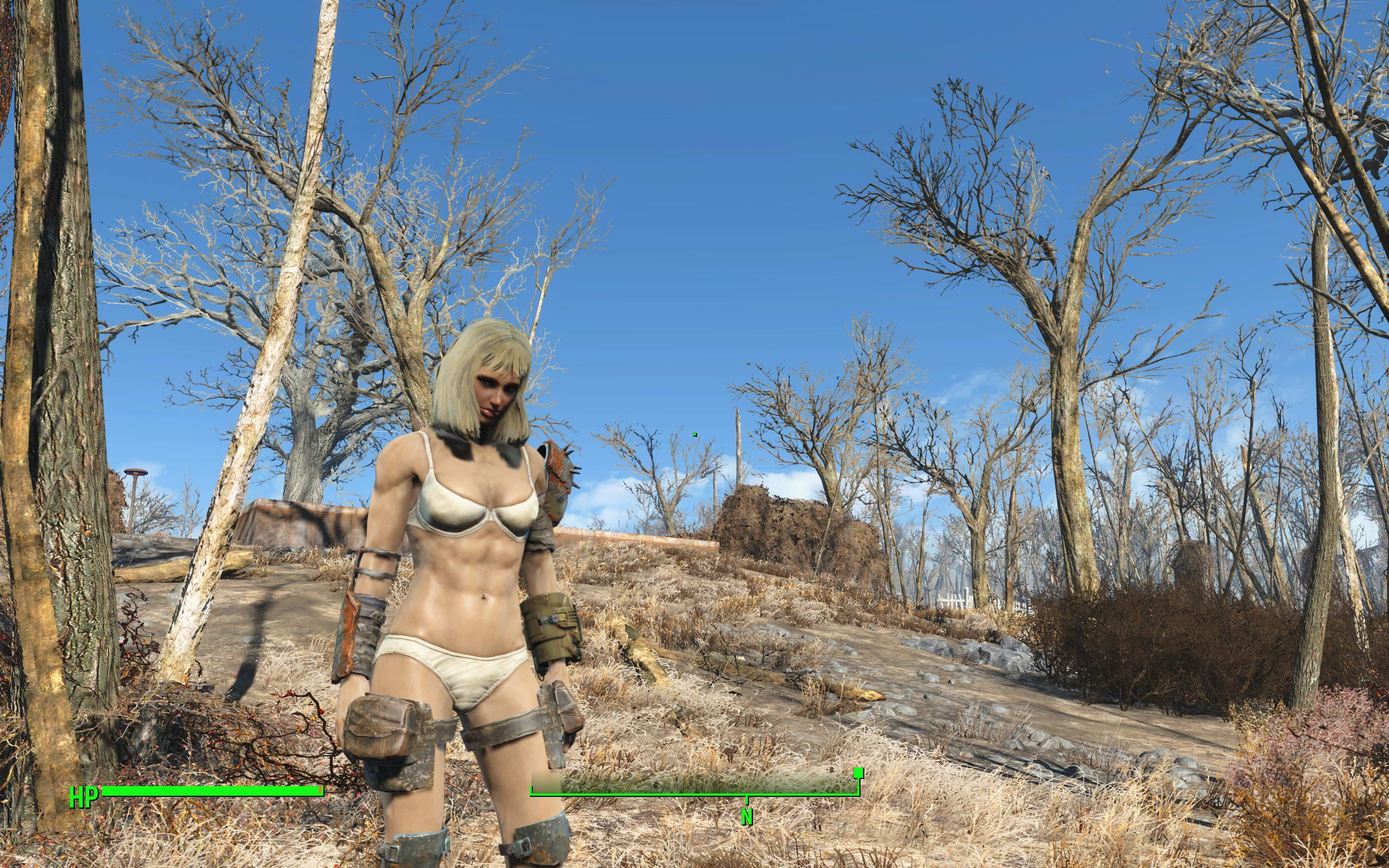 Fallout 3 nude female mods porno video