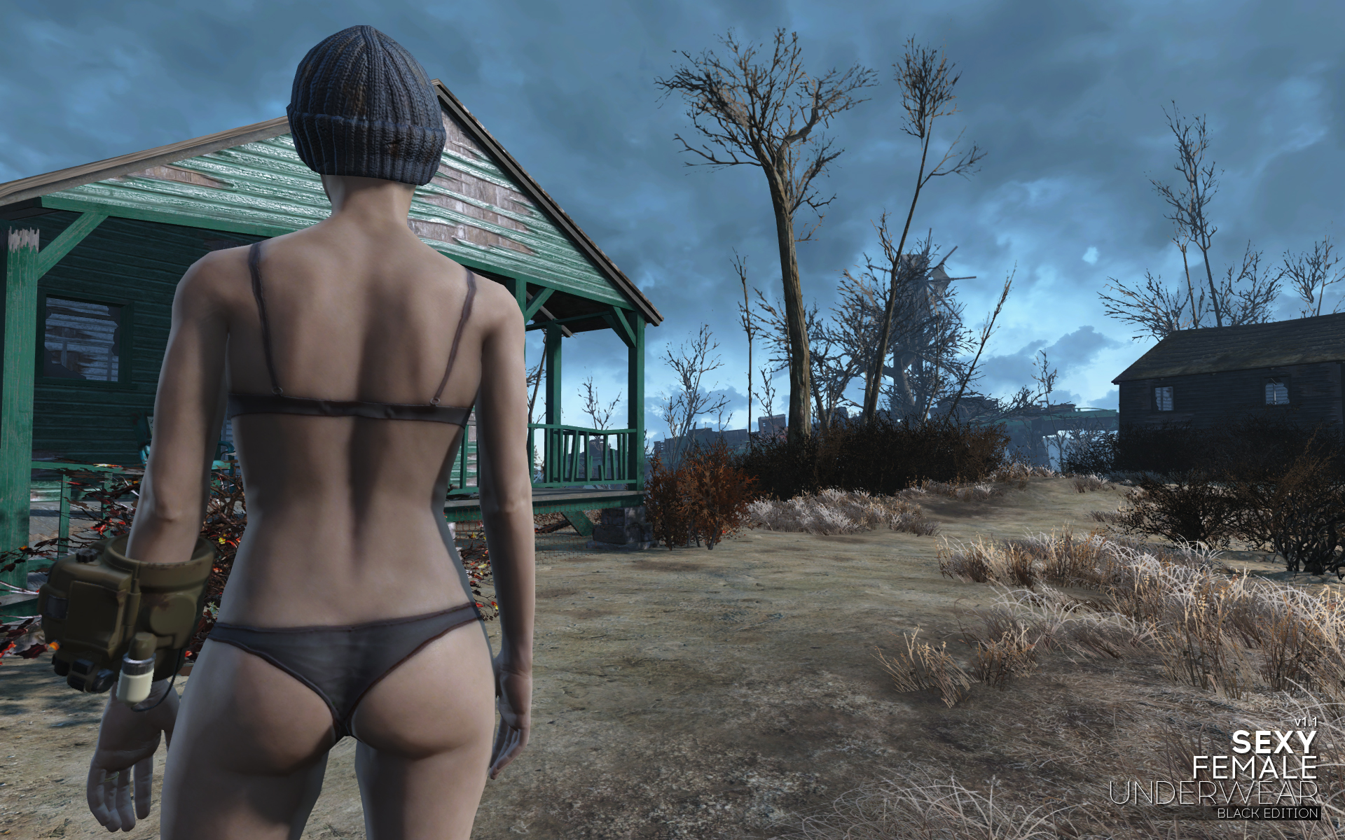 Fallout 3 male nude patch erotic females
