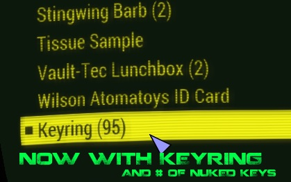 Image result for keyNuker fallout 4 mods