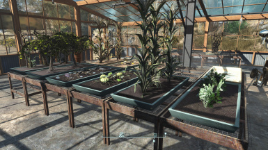 Clean Settlement Greenhouses
