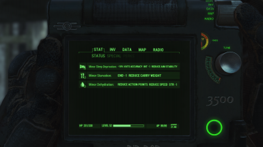 Hardcore Mode ON at Fallout 4 Nexus - Mods and community