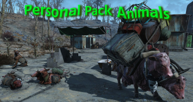Personal Pack Animals