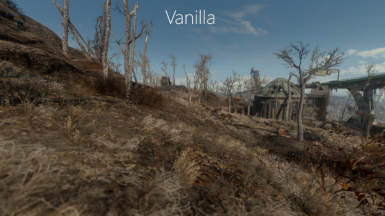 Comparsion Vanilla