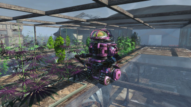 Pink Panzer tending to my Boston Airport crops