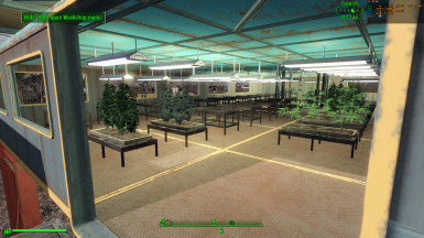 Cannabis CW_ Place Anywhere_(Tidy PotHeads To rule the CommonWealth)