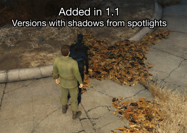 Spotlight Shadows