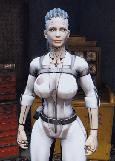 Custom Body   Female Robot Textures CBBE