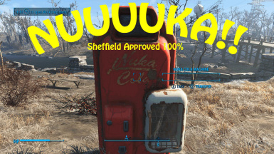 DG Nuka Cola Storage