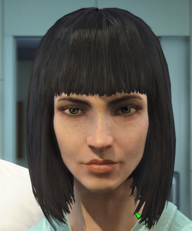 The Eyes Of Beauty Fallout 4 Edition