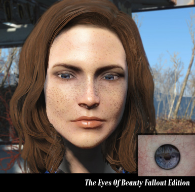 The Eyes Of Beauty Fallout Edition at Fallout 4 Nexus - Mods