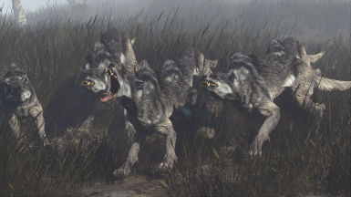 Mutated Wolf Grey