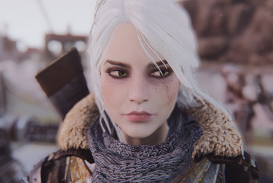 Sole Survivor Ciri - Character Preset Witcher 3