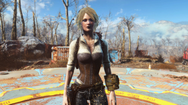Mod categories at Fallout 4 Nexus - Mods and community