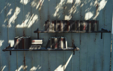 Do it yourshelf clutter for shelves and bookcases at fallout 4 25 items solutioingenieria Image collections