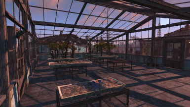 Greenhouse - Interior