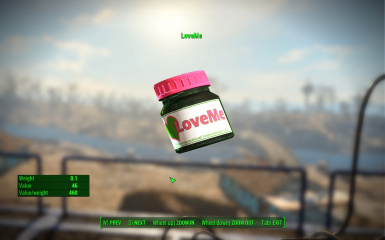 The LoveMe Pills