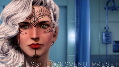 WITNESS LooksMenu Preset