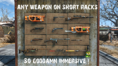 More Neat  any weapon on short racks