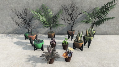 Selection of Potted Plant Decorations