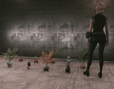 Mini Potted Plants Size Comparison with Female SoSu
