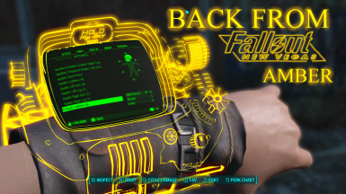 Holographic Pip-Boy 8000