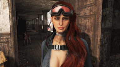 Picturesque Presets for LooksMenu at Fallout 4 Nexus - Mods
