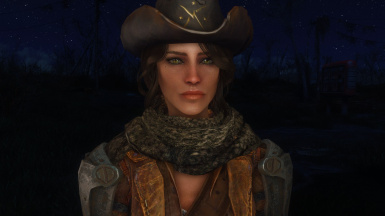 DEB - a sole survivor face preset