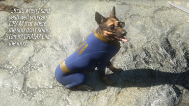 Dogmeat's Vault Suits (and Sunglasses) - All Vaults at
