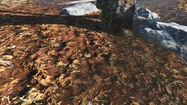 muddy leaves 1k